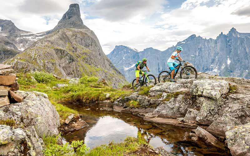 Mountainbiking fordert den ganzen Körper