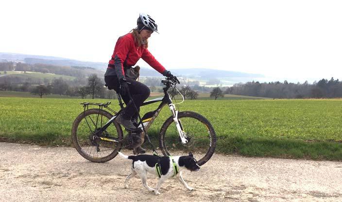 Der Hund sollte im Trab neben dem Fahrrad laufen