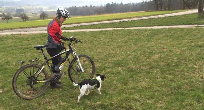 fahrradfahren mit hund fahrrad gesundheit. Black Bedroom Furniture Sets. Home Design Ideas